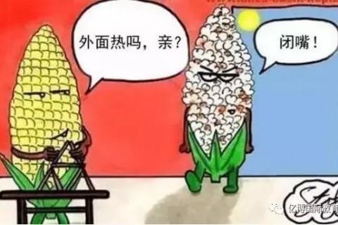 【恒大越府】清凉一夏 西瓜也疯狂