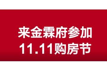 金霖府11.11购房节